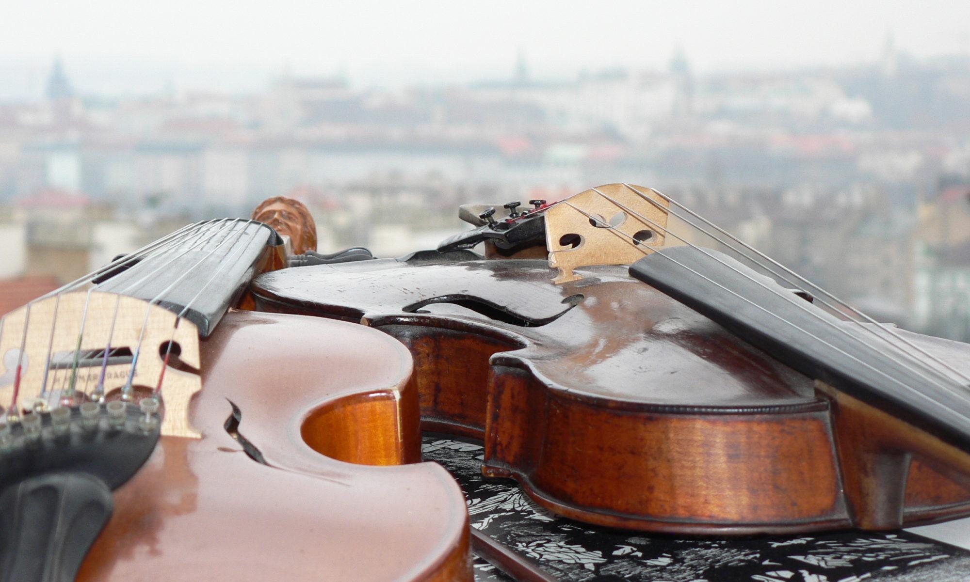 Jiří Šimáček, profesionální český houslista